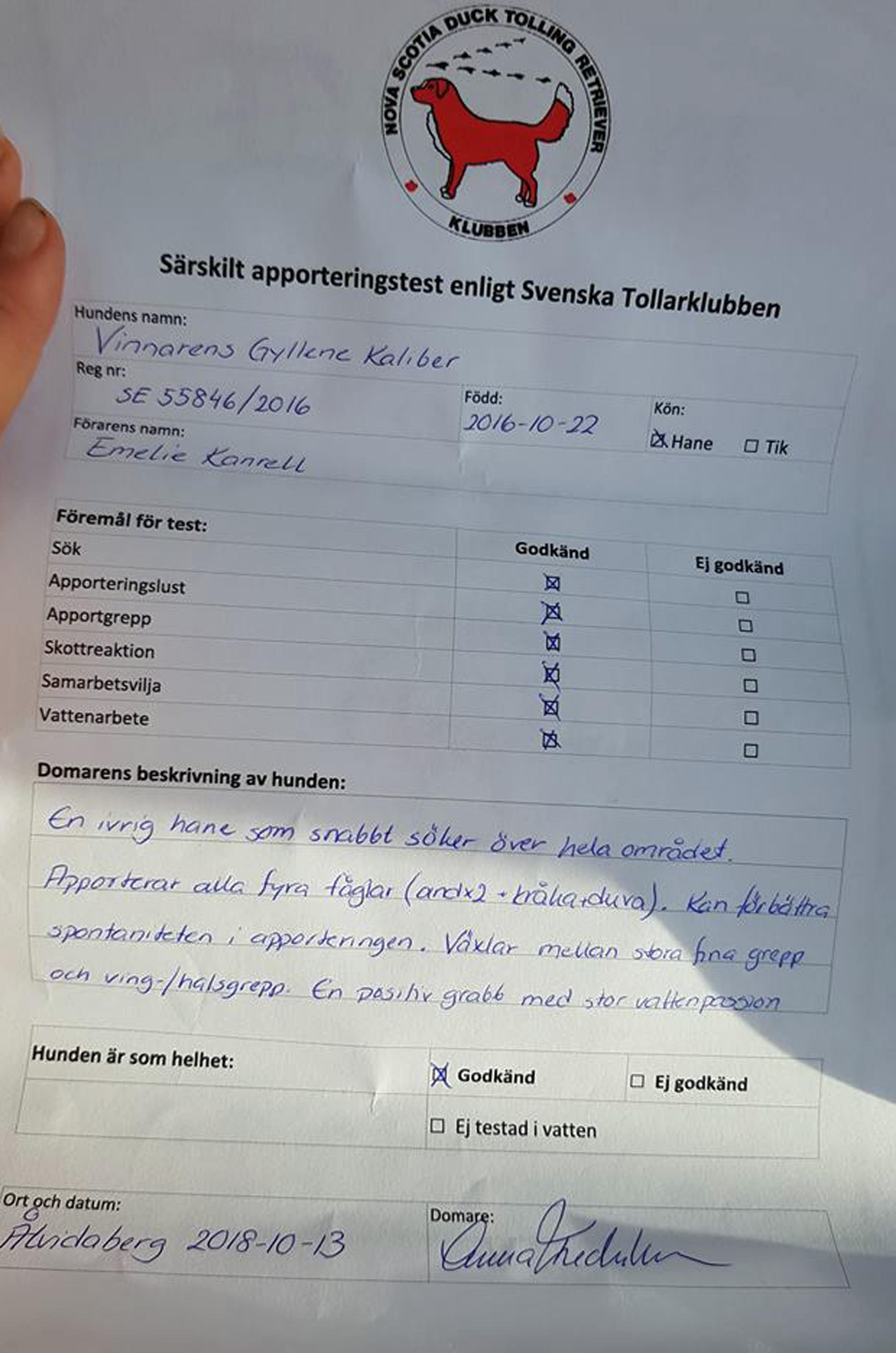 Diplom apporteringstest
